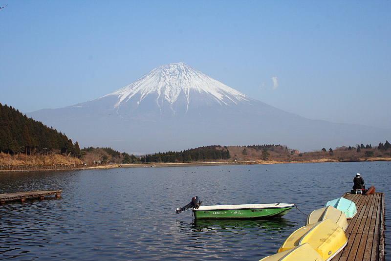 http://3eagle-hamada.sakura.ne.jp/tanukiko/phototanuki/1.jpg
